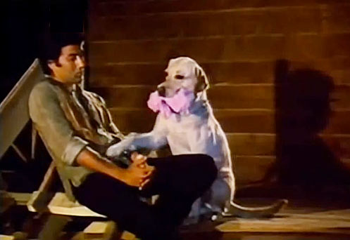 Sunny Deol with Bozo the dog in Betaab