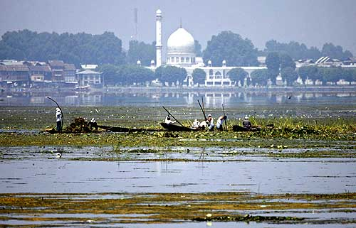 The picturesque Dal lake, now filled with weeds