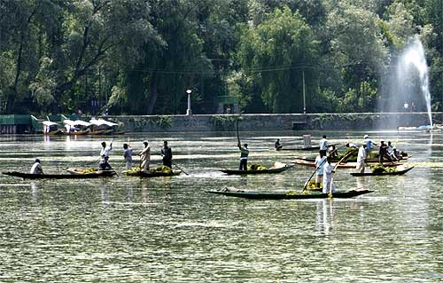Kashmiri workers manually remove weeds from the polluted lake. The lake, which once covered 30 sqkm has shrunk to half that size over the past four decades
