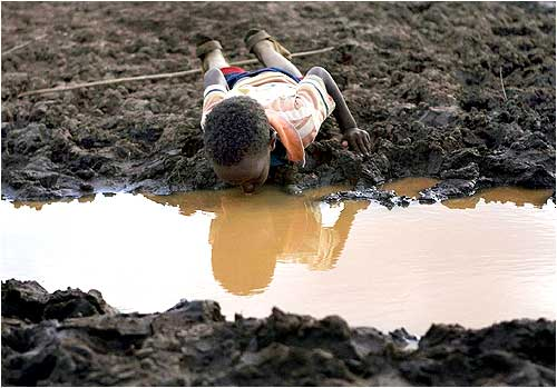 A boy drinks water from a pond. Prolonged drought, lack of water and limited pasture have led to conflict between the Somali and Borena ethnic groups in southern Ethiopia