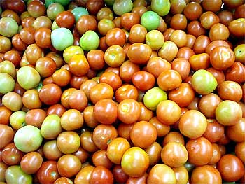 Tomatoes at a grocery store