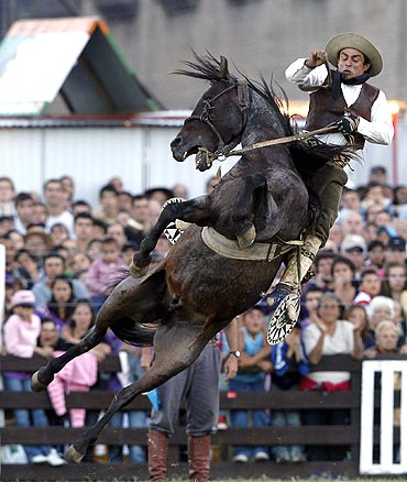A gaucho rides an untamed or unbroken horse during the event
