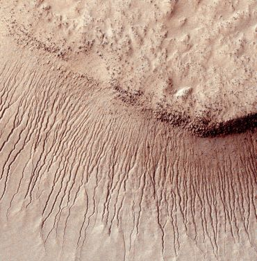 This photo shows many channels from 1 meter to 10 meters wide on a scarp in the Hellas impact basin. On Earth we would call these gullies. Some larger channels on Mars that are sometimes called gullies are big enough to be called ravines on Earth.