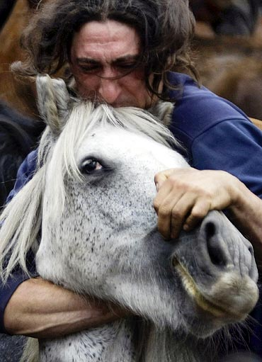 A reveller tries to hold on to a wild horse