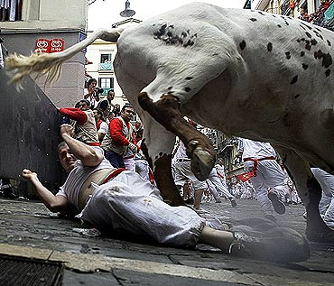 A reveller falls next to a steer during the first bull run