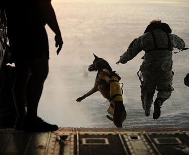 They have been trained to jump from aircraft at 25,000ft