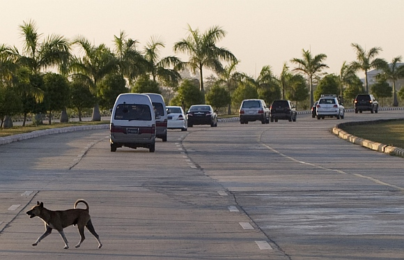 A dog crosses the road after Clinton's motorcade passes upon her arrival in Naypyidaw, Myanmar