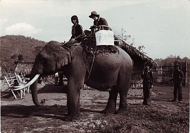 Bertil Lintner (on the elephant) on his way to an assignment in Kachin State in Myanmar