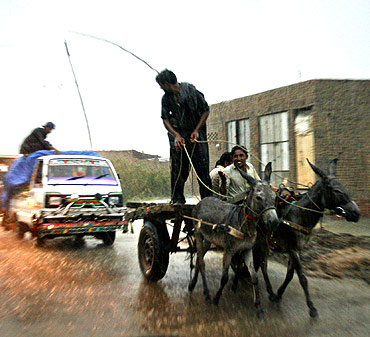 Men riding on a donkey cart ride through monsoon rains in the Tando Allahyar district of Pakistan's Sindh province