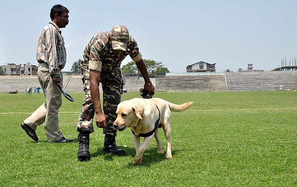 Sniffer dogs in action ahead of PM's function at Nehru stadium in Guwahati