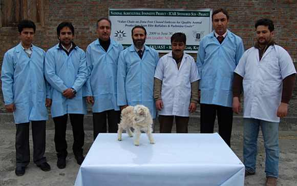 A team of Kashmiri scientists pose with clone at the Sheri Kashmir University of Agriculture Sciences and Technology