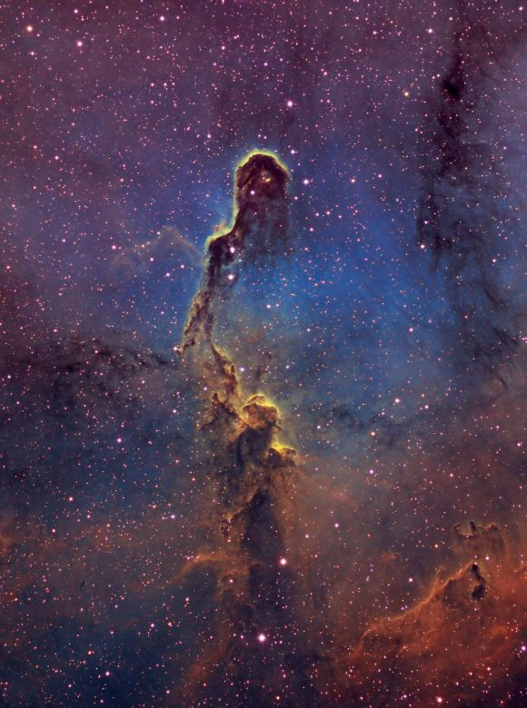 IC 1396 - Elephant -Trunk Nebula