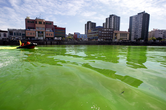 A boat makes its way across the Matanza-Riachuelo river, Argentina's most polluted basin, in Buenos Aires