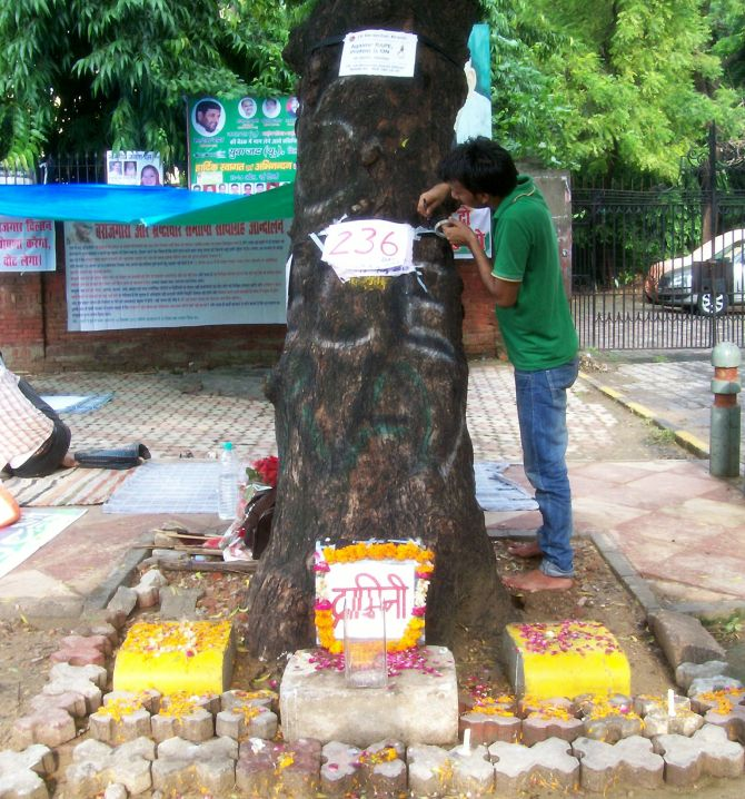 A paper marking the number of days of protest is pinned to the trunk of the tree