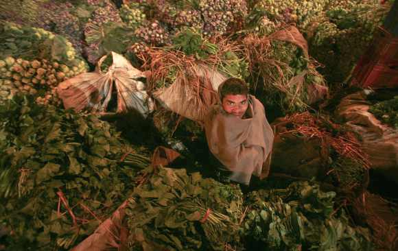 A youth sits amid a heap of vegetables at a wholesale vegetable market on a cold morning in Jammu