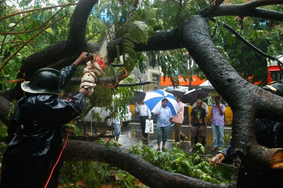 Firefighters try to cut a giant tree that fell on L J Road in  Mahim due to continuous heavy rains that has lashed Mumbai.