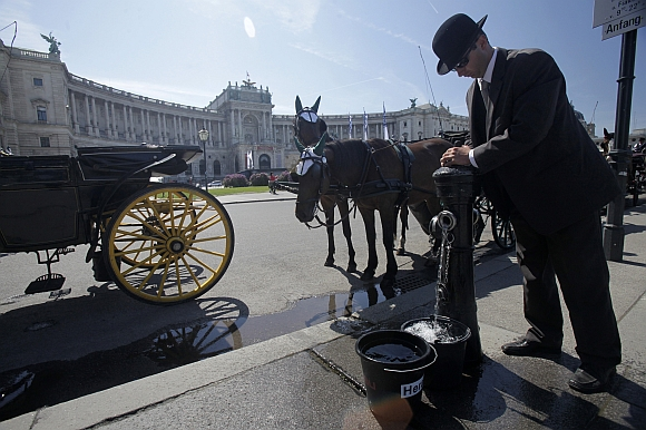A traditional Viennese Fiaker (coachman) fills pails to water his horses at Heldenplatz square in front of the historic Hofburg palace in Vienna