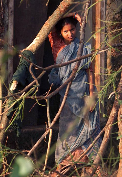 A woman looks at an uprooted tree which fell in front of her house in the cyclone hit Dhirpur village in Orissa