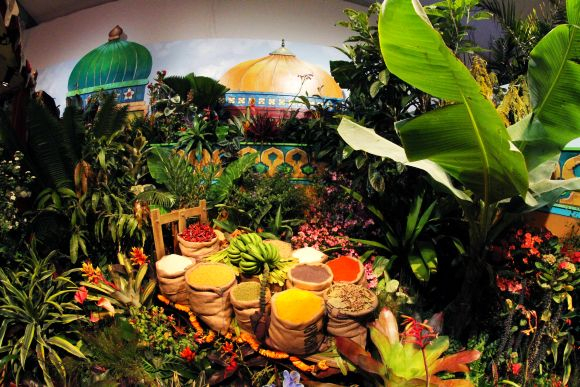 Colours of South Asia in NY's famed Macy's Flower Show