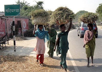 The Good And Very Very Bad Education >> Has Change really come to Bihar? - Rediff.com India News