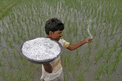 Congress-BJP spar over 'rice bowl'