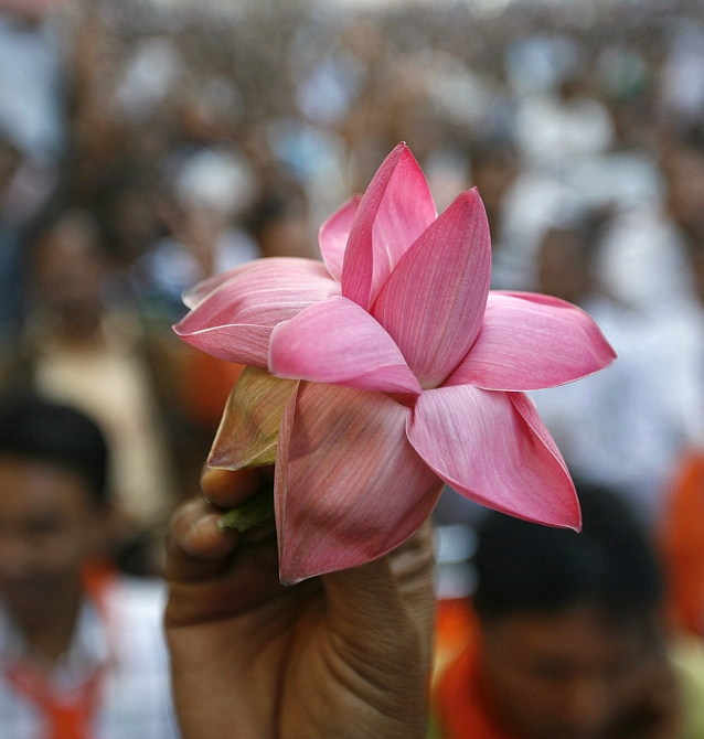 A BJP supporter holds his party's lotus symbol outside the party office in Ahmedabad