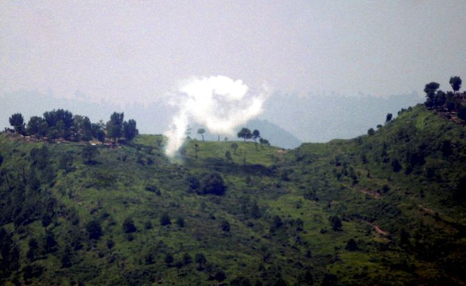 16 animals killed in ceasefire violation by Pak