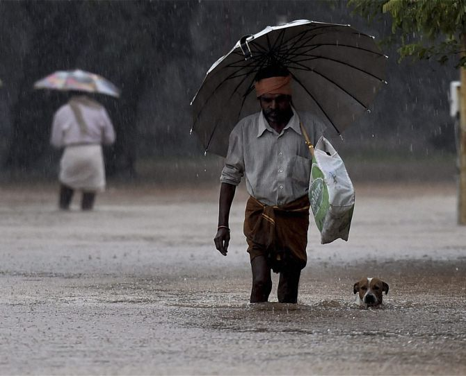 Monsoon arrives in Kerala, says IMD