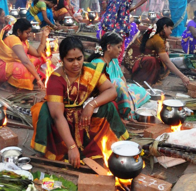 Pongal celebrations in Mumbai