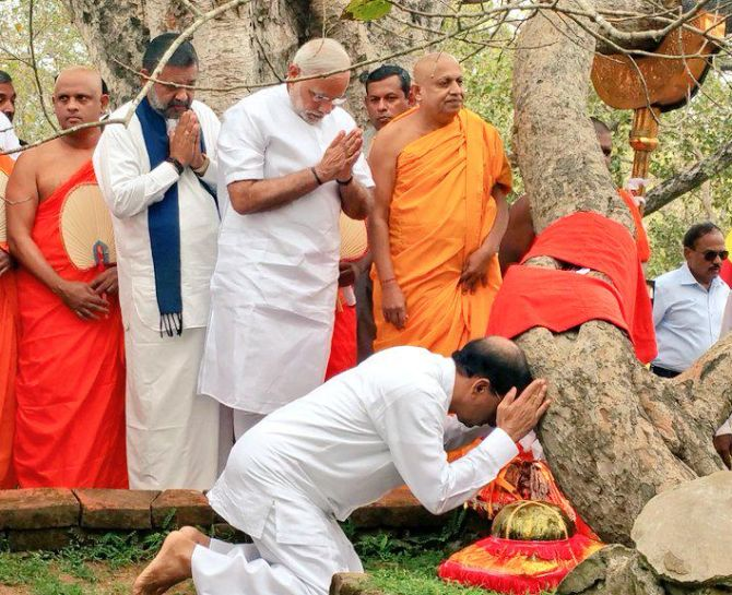 Prime Minister Narendra Modi and Sri Lankan President Mathripala Sirisena (kneeling) worship at the sacred Mahabodhi tree in Anuradhapura, March 14, 2015. Legend has it that the southern branch of the holy Bodhi tree in Bodh Gaya in India under which Lord Buddha attained enlightenment was brought to Sri Lanka in 288 BC by Princess Sanghamitta (Sanghamitra in Sanskrit), Emperor Ashoka's daughter. It was planted in Anuradhapura and is venerated to this day by Buddhists from many countries. Photograph: @PMOIndia/Twitter