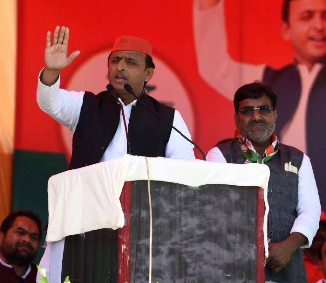 Don't campaign for the donkeys of Gujarat: Akhilesh to Amitabh