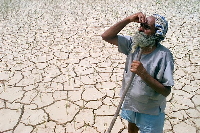 A farmer stands in his parched field, waiting for the rain.