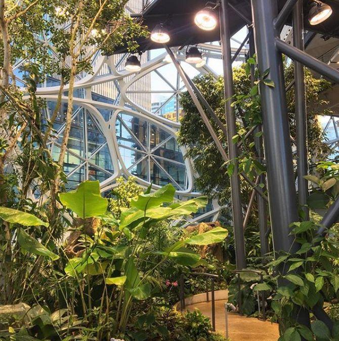 Sneak peek into Amazon's Spheres: $4 billion 'mini