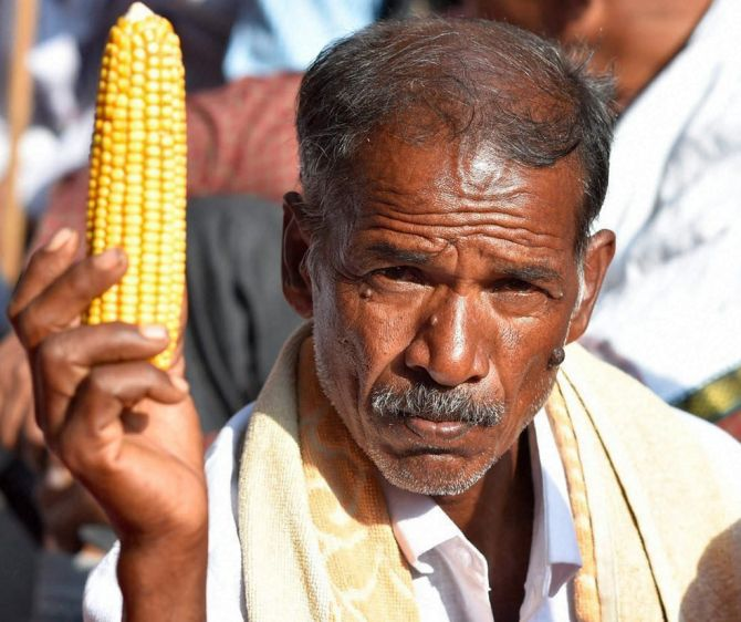 A farmer at a rally in Delhi
