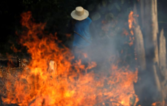 Brazil's Amazon rainforests burn at record rate