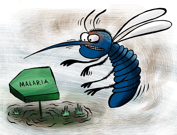 How to fight malaria