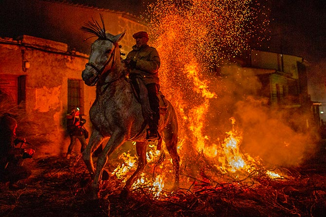India News - Latest World & Political News - Current News Headlines in India - PHOTOS: Horses purified by fire at Spanish festival