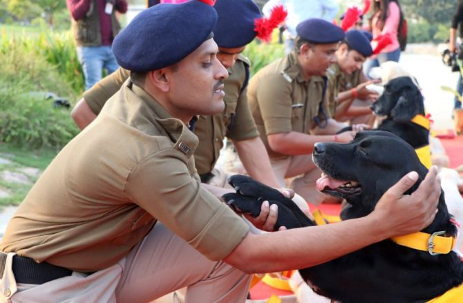 CISF canines retire with medals, selfies and hugs