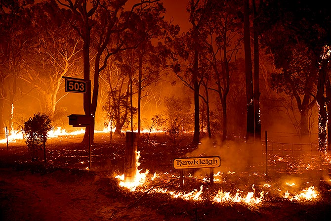 Bushfires: Can we work on climate, pleads Ashwin