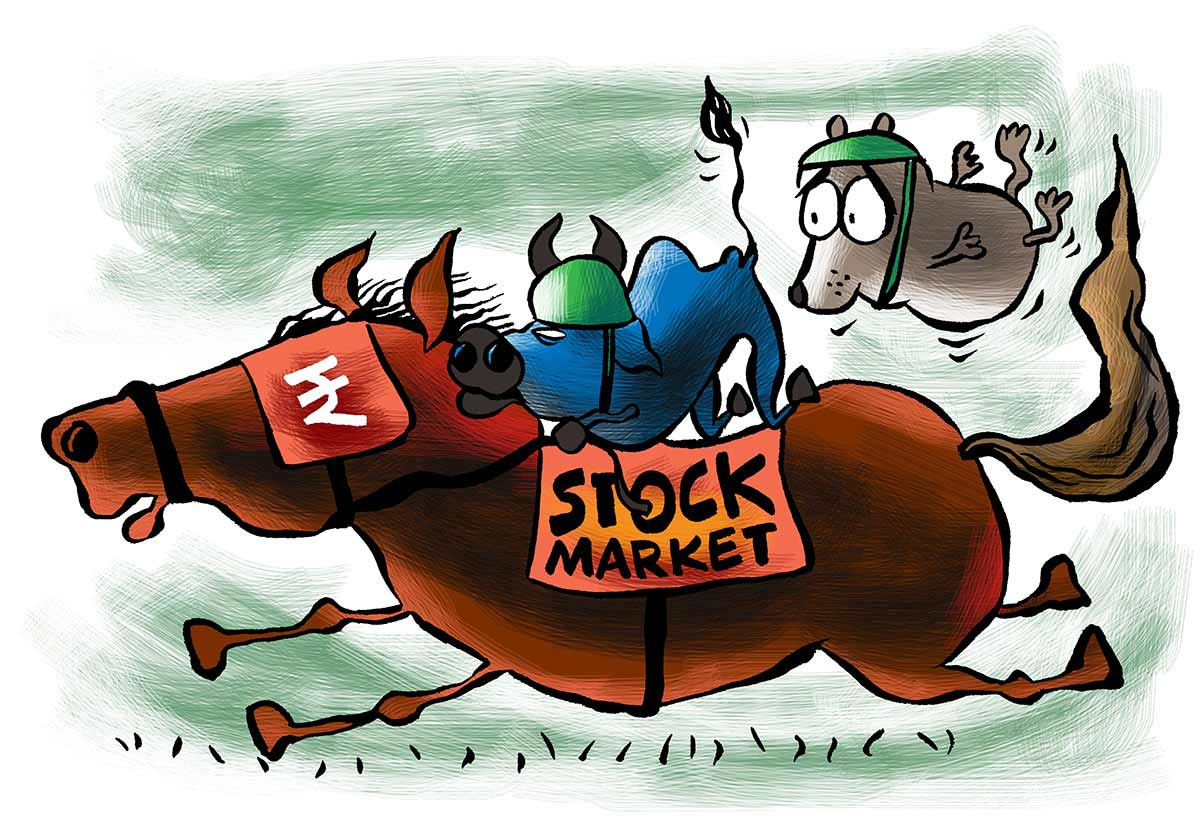 What stocks should you invest in?