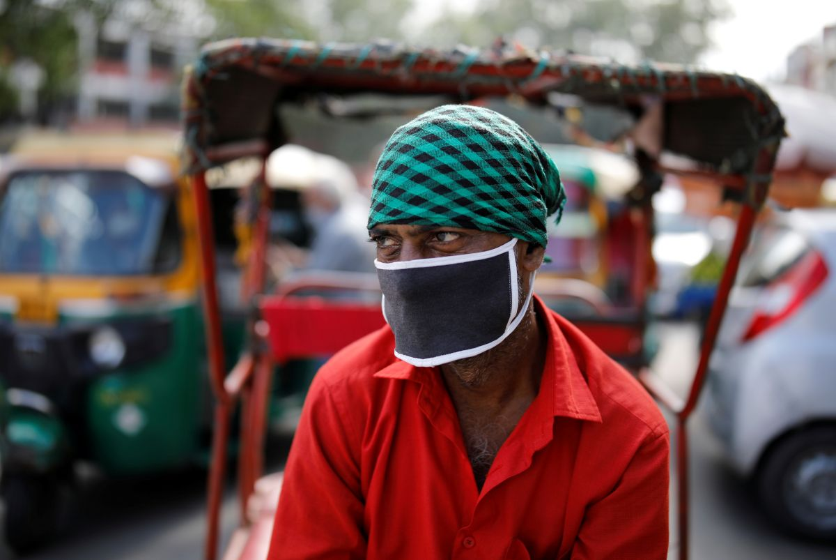 Bird flu alert in Rajasthan after crow deaths reported