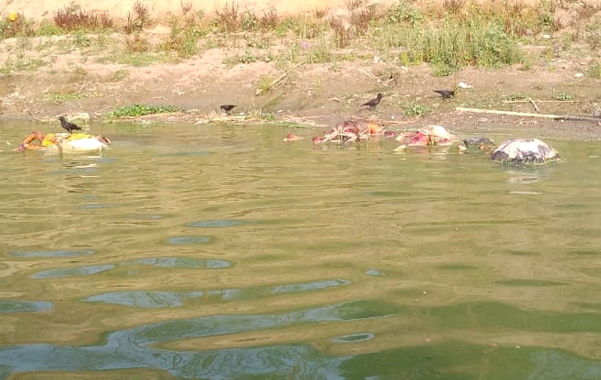 Bodies fished from Ganga floated from UP: Minister