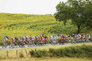The peloton rides through the French countryside