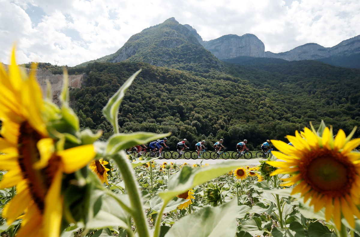 The peloton in action at the 169.5-km Stage 13 from Bourg d'Oisans to Valence on July 20